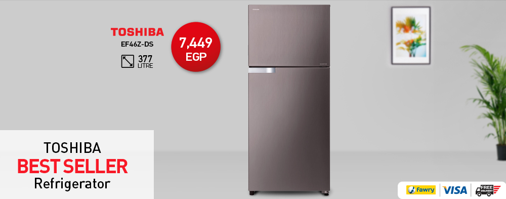Toshiba Refrigerator Inverter 377 Litre with 2 Stainless Door GR-EF46Z-DS