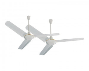 Tornado Ceiling Fan 48 inch with 3 Metal Blades & 5 Speeds CF48