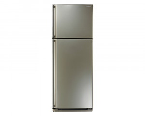 Sharp Refrigerator 340 Litre with Ag+ Nano Deodorizer Filter in Champagne color SJ-48C(CH)